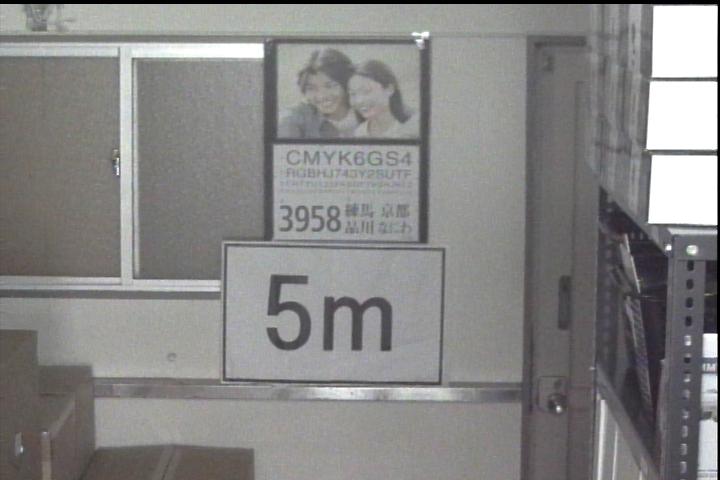 日中【望遠】撮影